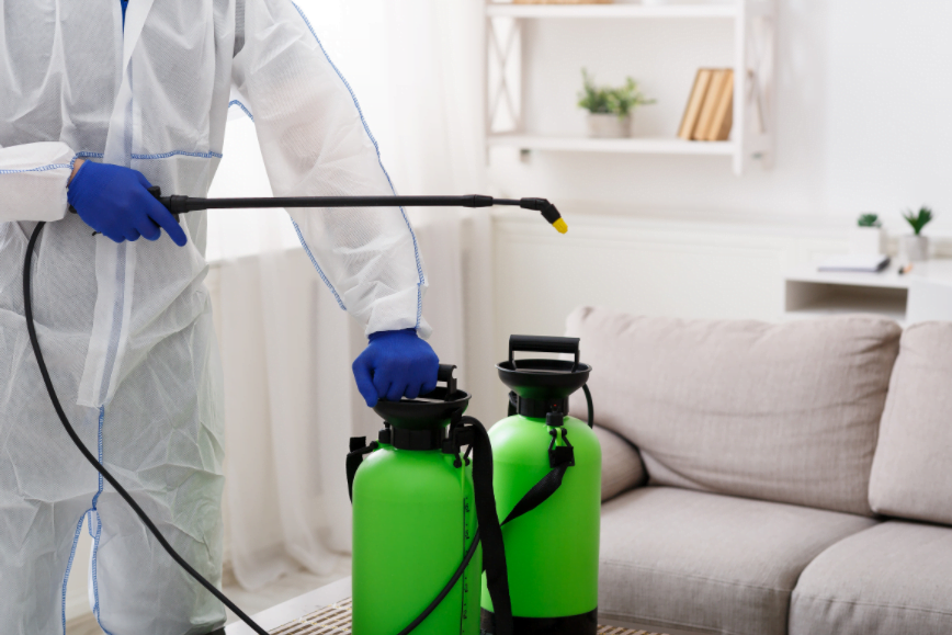 Mold Clean Up Houston TX